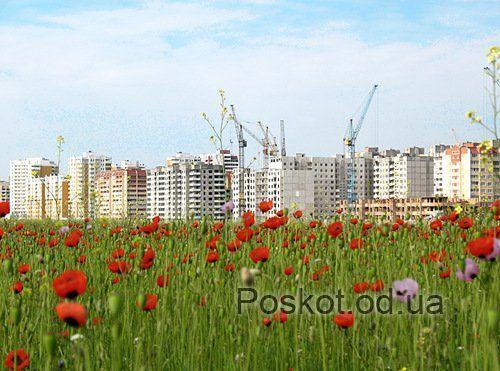 Сахарова, посёлок Котовского, Суворовский район
