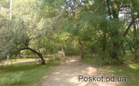 Парк Лузановка