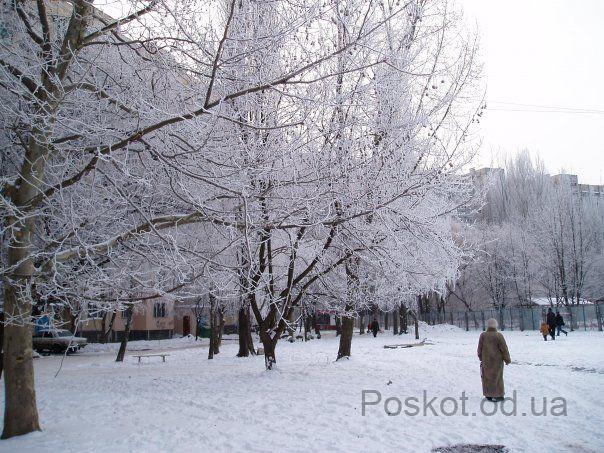 15 школа, посёлок Котовского