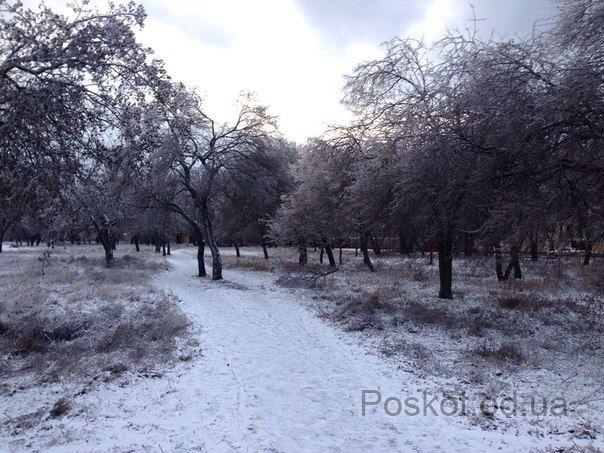 Лузановка зимой