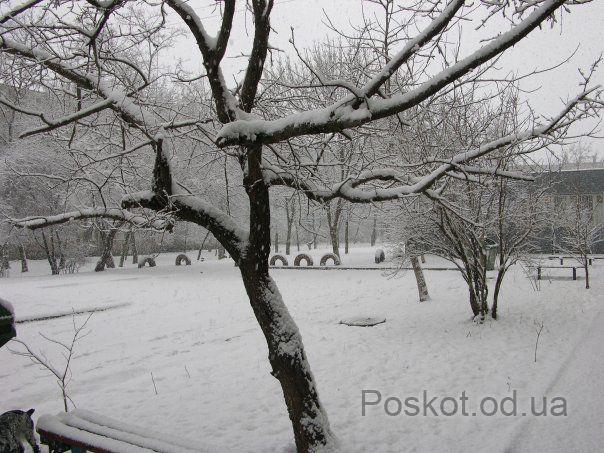 Добровольского, посёлок Котовского