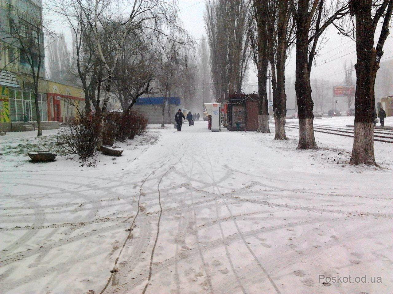 Зима, Поскот